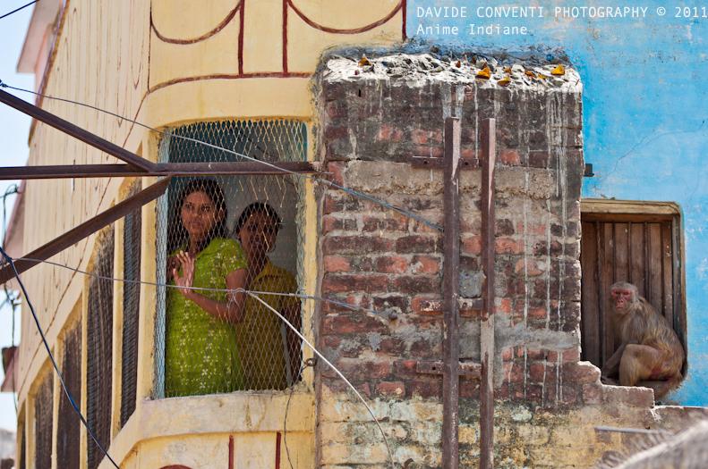 http://davideconventi.com/files/gimgs/24_05-ayodhya249-copia.jpg